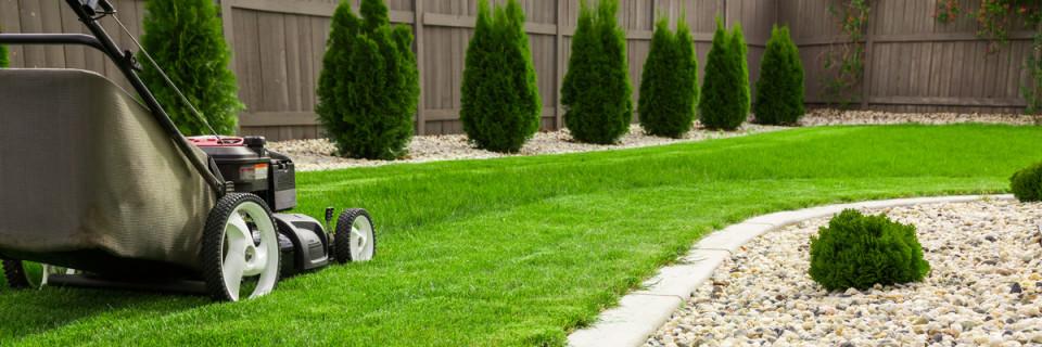 Das Gras ist immer grüner auf Ihrer Seite des Zauns.